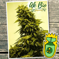 AK BIO - Biological Seeds